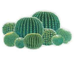 Abyss CACTUS Badteppich